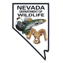 Nevada Department Wildlife