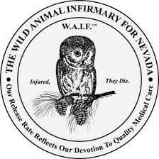 Wild Animal Infirmary